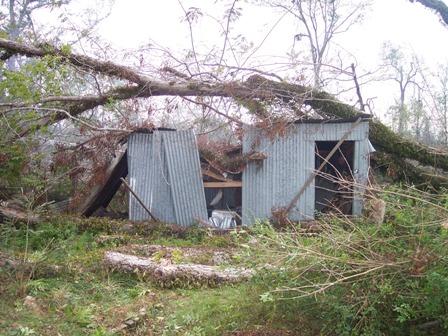 mrs-audreys-shed.jpg
