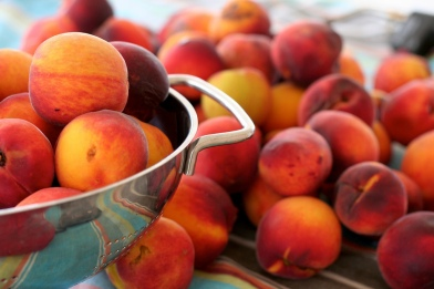 Ruston peaches are a Louisiana favorite.